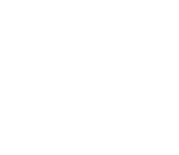 Fines, Tickets, Citations: A list of every parking ticket